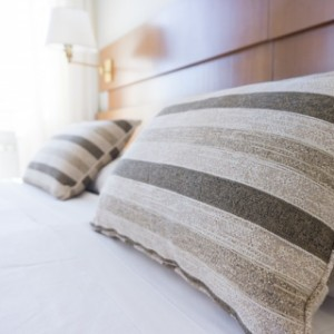 Bed bug pest control